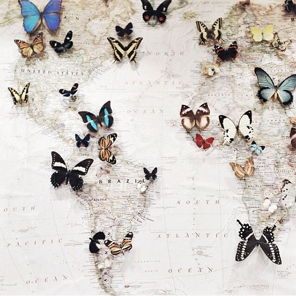 la la loving map with butterflies