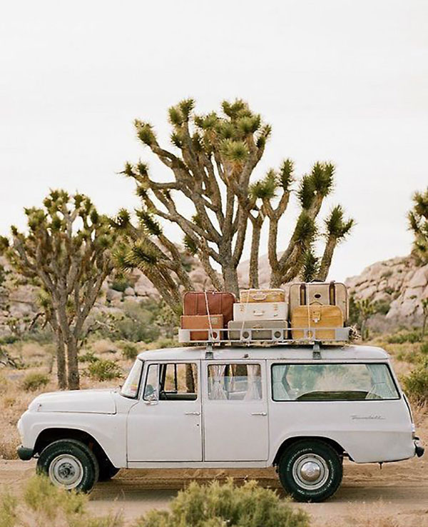 la-la-loving-the-wagoneer