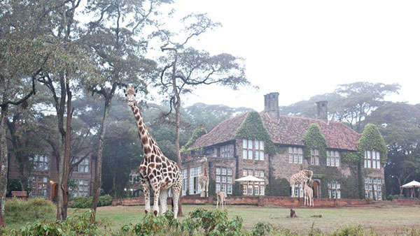 giraffe-manor_lalalovely