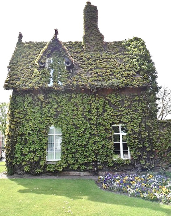 la-la-loving-ivy-house