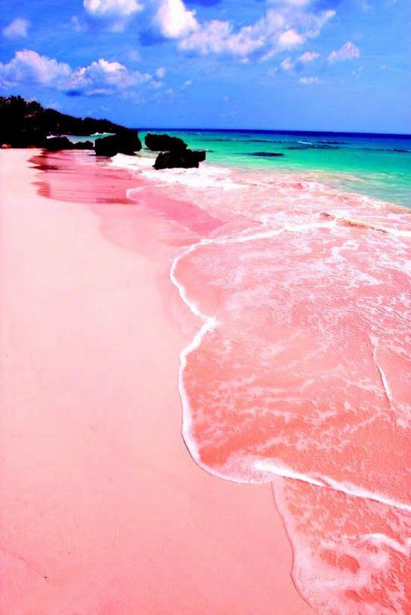 pink-beach_lalalovely