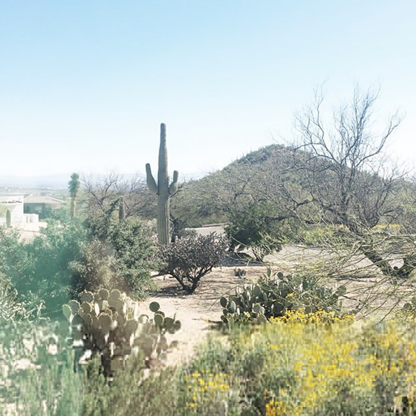 tucson_la la lovely blog
