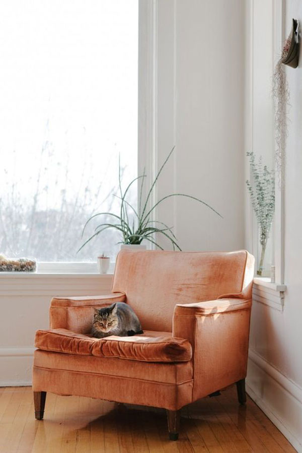 ... Tucked Away In Corners, Crannies, And Cozy Spots They Also Work  Beautifully In Living Rooms And Dining Rooms (the Velvet Dining Chair Trend  Is Also Very ...